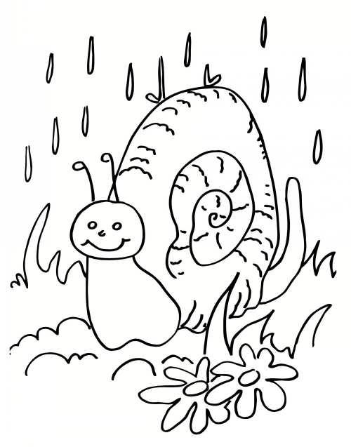 رنگ آمیزی و نقاشی حلزون برای بچه ها