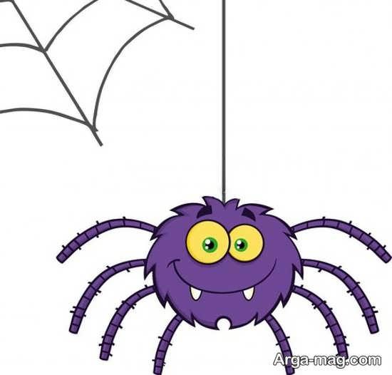 رنگ آمیزی عنکبوت