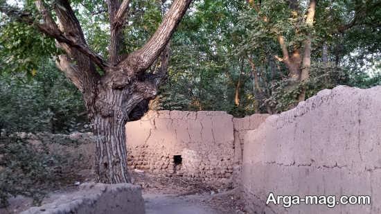 روستای سرسبز آذرشهر