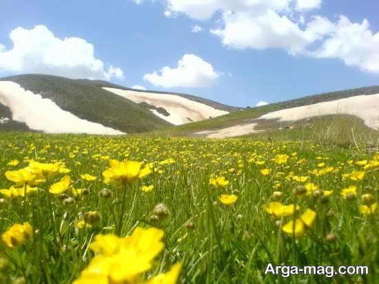 باغ های زیبای آذرشهر