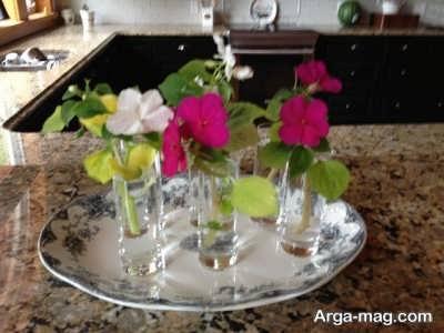 نحوه پرورش گل حنا