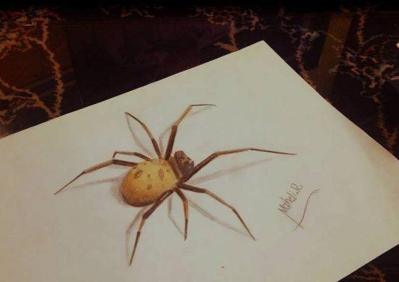 نقاشی عنکبوت با طرح جذاب و کودکانه