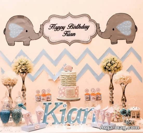 تم تولد طلایی فیل کوچولو