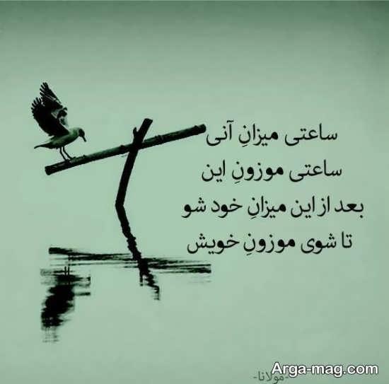 متن مخصوص از مولانا