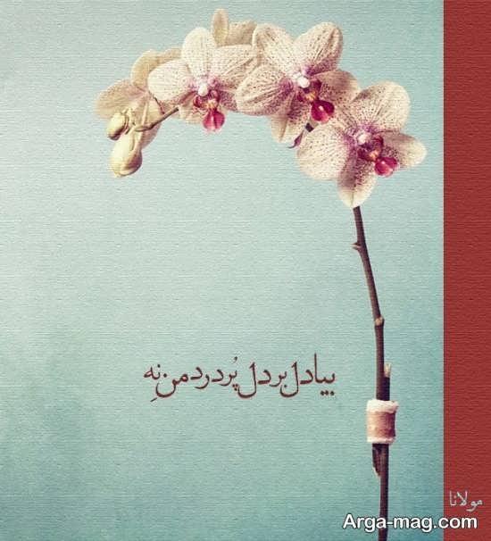 عکس نوشته قشنگ مولانا