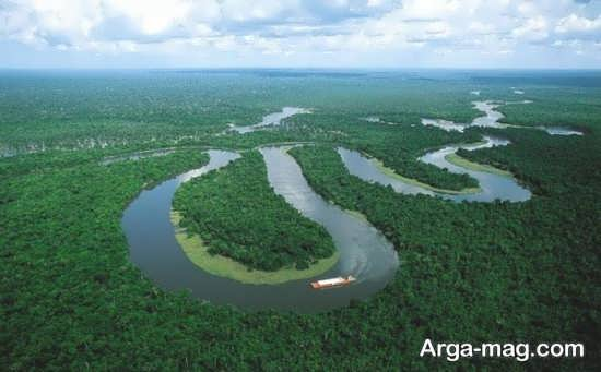 جنگل های سرسبز برزیل