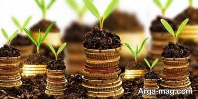 تقویت هوش مالی در افراد