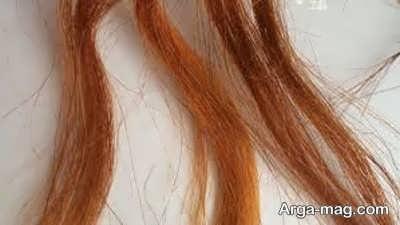 رنگ موی طبیعی حنا