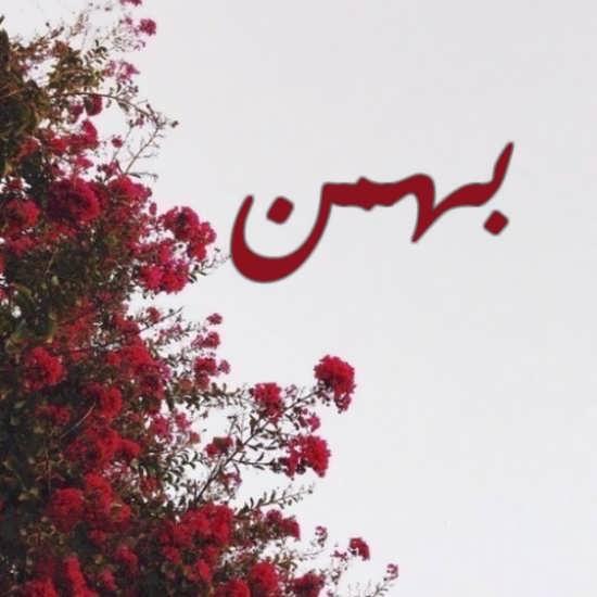 عکس پروفایل متفاوت اسم بهمن