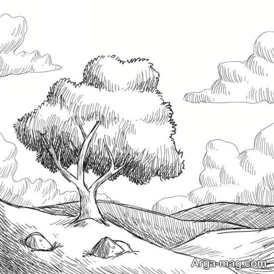 طراحی جنگل ساده