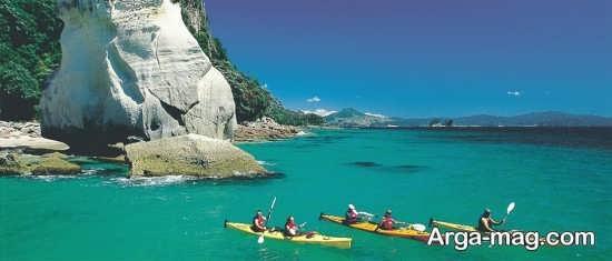 مهاجرت کردن به نیوزلند