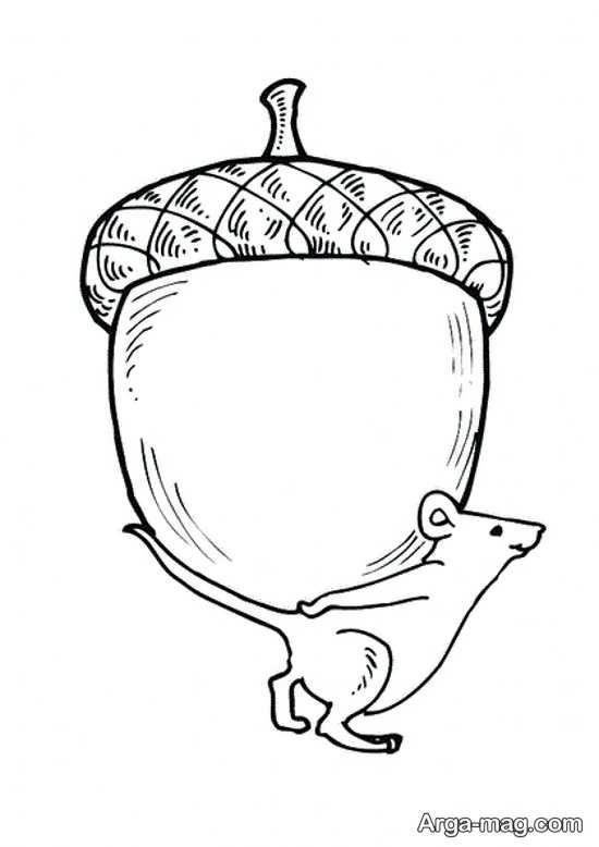 نقاشی ساده و فانتزی سنجاب