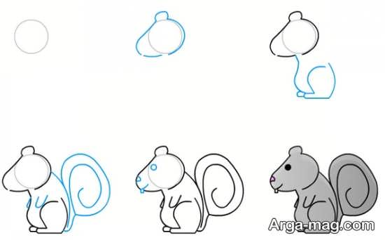 آموزش کشیدن سنجاب
