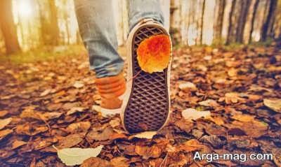 جملات زیبا در مورد پاییز