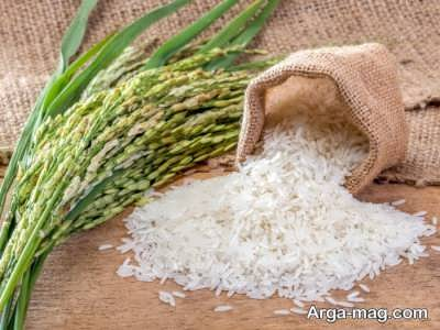 دیدن برنج در خواب دارای چه تعبیری است؟