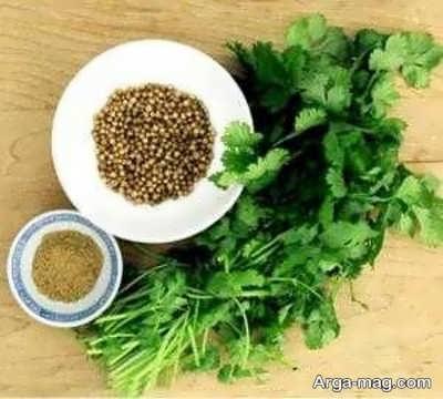 داروی گیاهی برای اعصاب