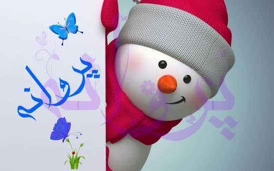 عکس اسم پروانه با طرح زمستان