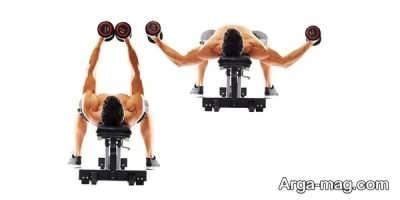 حرکات ورزشی بدنسازی برای تقویت عضله