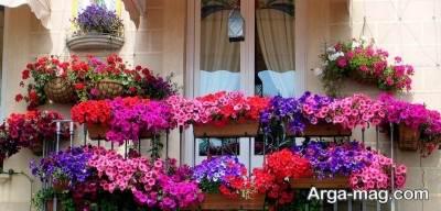 گل برای فضای تراس