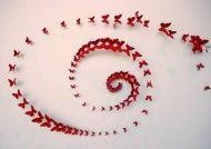 مدل پروانه تزئینی