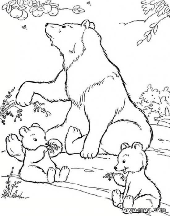 نقاشیهای بی نظیر حیوانات جنگل
