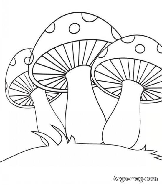 کشیدن قارچ های زیبا