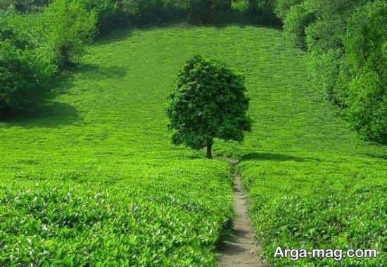 مکان های دیدنی آستارا در استان گیلان
