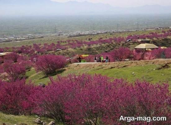 دیدنی های زیبای افغانستان