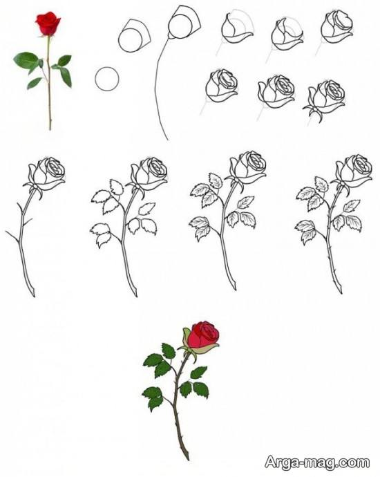 نقاشی گل رز برای کودک