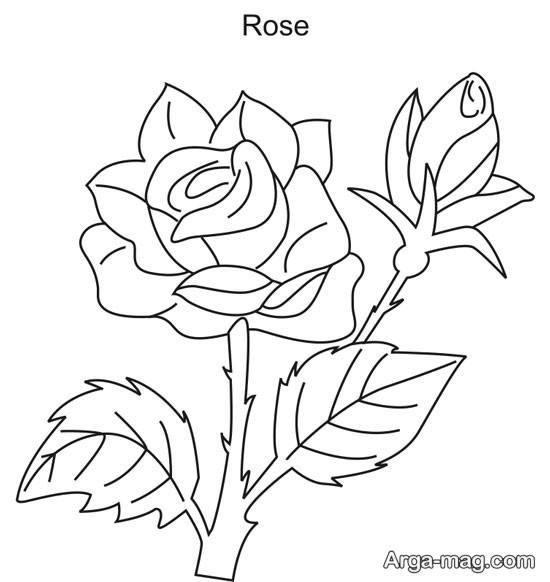 نقاشی گل رز ساده