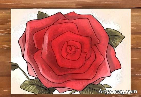 رنگ آمیزی متنوع گل رز