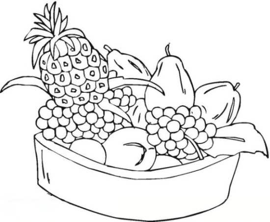 نقاشی میوه