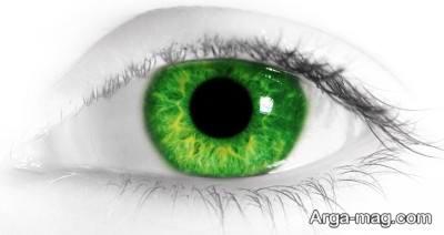 روانشناسی خاص رنگ سبز