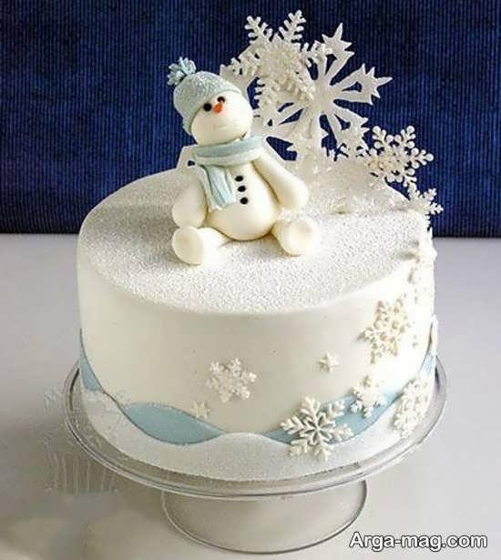 تم تولد زیبای زمستانی