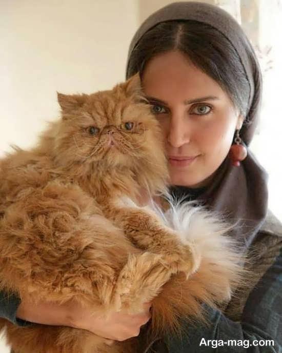 گربه خبرساز الناز شاکردوست