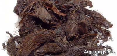 درمان تپش قلب با ریشه سنبل الطیب