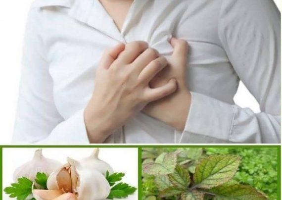 درمان گیاهی تپش قلب