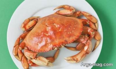 چرا گوشت خرچنگ حرام است؟