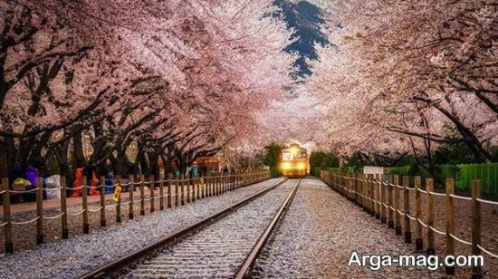 مکان های دیدنی خاص کره جنوبی