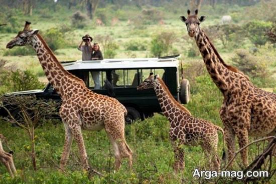 مکان های دیدنی آفریقا