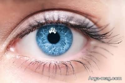 سلامت چشم با اسفناج