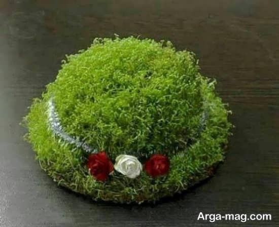 تزئین سبزه عروس