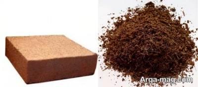 فواید بینظیر کوکوبیت برای گیاه