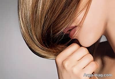 حفظ سلامت مو با کیوی خشک