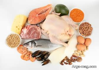 لاغری سریع شکم با مصرف پروتئین