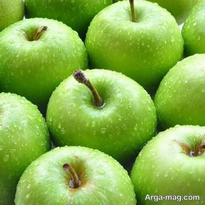 چگونگی طرز تهیه ترشی سیب