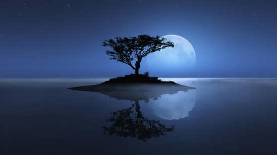 عکس شگفت انگیز طبیعت شب