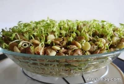 سبزه عدس برای عید
