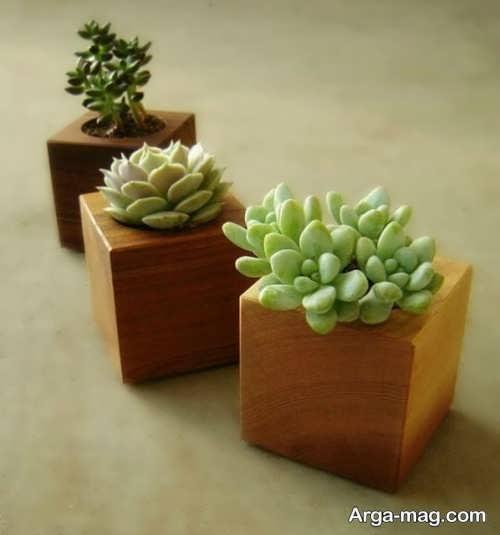 گلدان زیبا و چوبی