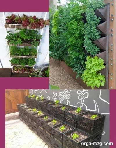 باغبانی در منزل